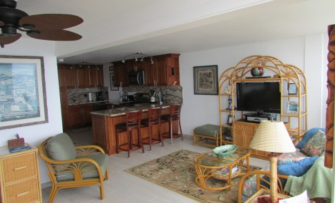 Living room and kitchen